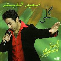 Saeed Shayesteh - 'Man Sazegaram'
