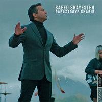 Saeed Shayesteh - 'Parastooye Gharib'