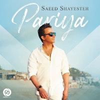 Saeed Shayesteh - 'Pariya'