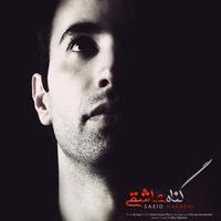 Saeid Hashemi - 'Gonahe Asheghi'