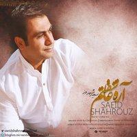 Saeid Shahrouz - 'Are Asheghetam (New Version)'