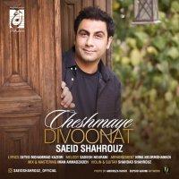 Saeid Shahrouz - 'Cheshmaye Divoonat'