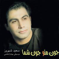 Saeid Shahrouz - 'Joone Man'