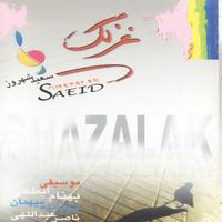 Saeid Shahrouz - 'Taghados'