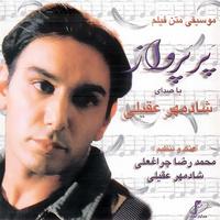 Shadmehr Aghili - 'Alamate Soal (Instrumental)'