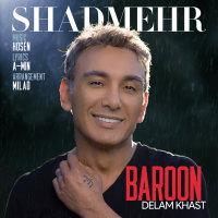 Shadmehr Aghili - 'Baroon Delam Khast'