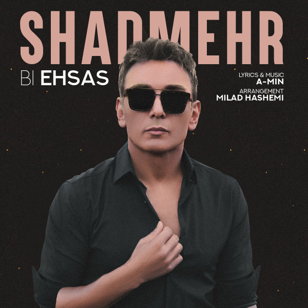 Shadmehr Aghili - 'Bi Ehsas'