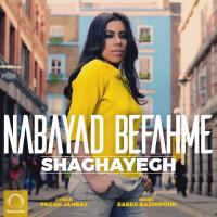 Shaghayegh - 'Nabayad Befahme'