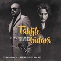 Shahab & Babak Amini - 'Takhte Bidari'