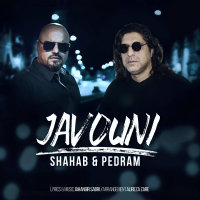 Shahab Projects & Pedram - 'Javouni'