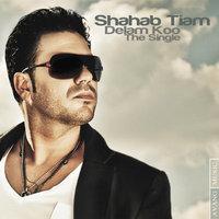 Shahab Tiam - 'Delam Kou'