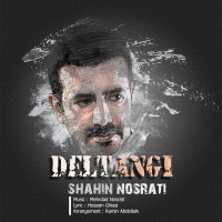 Shahin Nosrati - 'Deltangi'