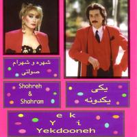 Shahram Solati - 'Elahi'
