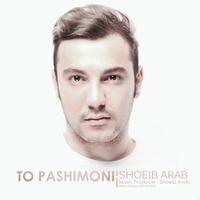 Shoeib Arab - 'To Pashimoni'