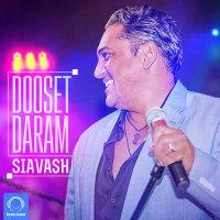 Siavash - 'Dooset Daram'