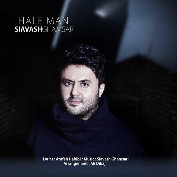 Siavash Ghamsari - 'Hale Man'