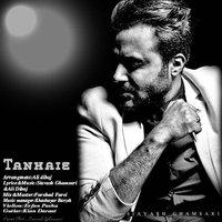 Siavash Ghamsari - 'Tanhaie'