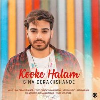 Sina Derakhshande - 'Kooke Halam'