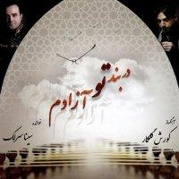 Sina Sarlak - 'Avaze Aragh Va Chaharmezrab Nava'