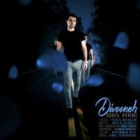 Soheil Karimi - 'Divooneh'