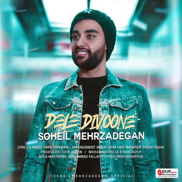 Soheil Mehrzadegan - Dele Divoone