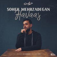 Soheil Mehrzadegan - 'Havaas'