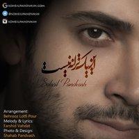 Soheil Pandvash - 'In Yek Taraneh Nist'