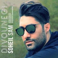 Soheil Sam - 'Divounegi'
