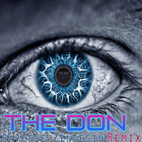 The Don - 'Raveshe Zendegim (Remix)'