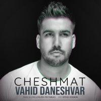 Vahid Daneshvar - 'Cheshmat'