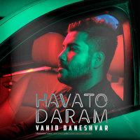Vahid Daneshvar - 'Havato Daram'