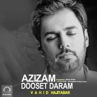 Vahid Hajitabar - 'Azizam Dooset Daram'
