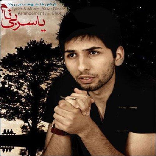 Yaser Binam - 'Karkas Ha Be Behesht Nemiravand'
