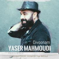 Yaser Mahmoudi - 'Divoonam'