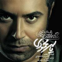 Yaser Mahmoudi - 'Goftam Bemoon'