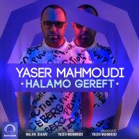 Yaser Mahmoudi - 'Halamo Gereft'