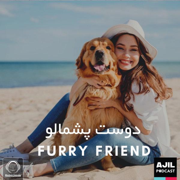 Ajil - 'Furry Friend'