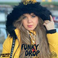 Funky Drop - 'DJ Pooria'