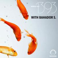 Norooz Mix 1393 - 'Bahador-S'